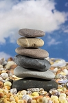 Online Sessions The Balanced Being Series